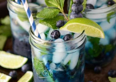Blueberry-Mojito-1-logo