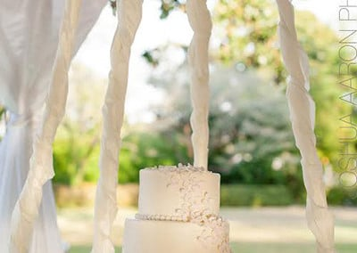chandelier-cake5_aaron-paul